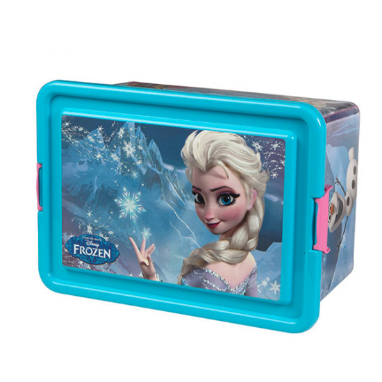 Frozen Toy Box (32 x 23 cm)